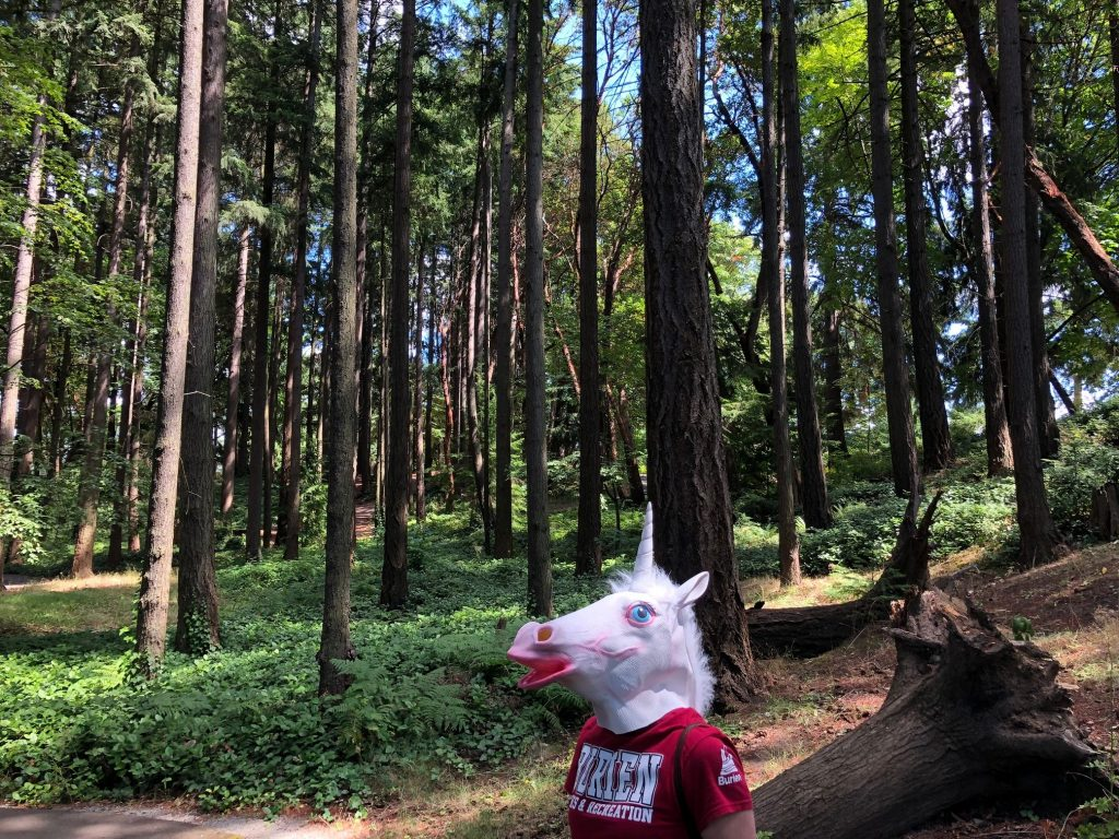 Unicorn in forest.