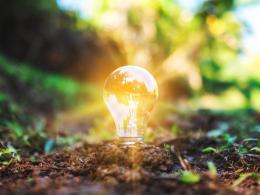Light bulb in earth.
