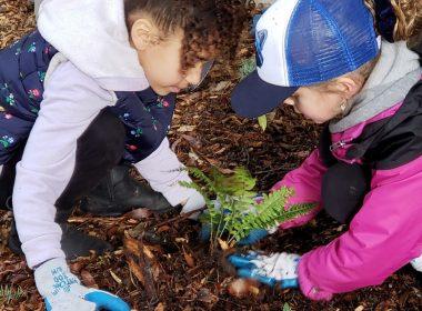 Two children plant a fern.