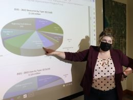 Person pointing at projection of pie chart.